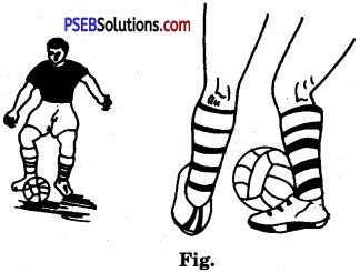 Football image 6