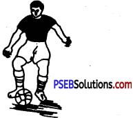 Football image 9