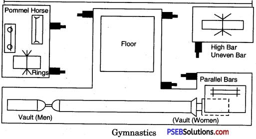 Gymnastics image 8