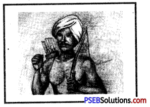 PSEB 8th Class Social Science Solutions Chapter 13 Colonialism and Tribal Society 1