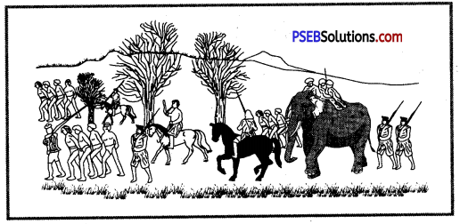 PSEB 8th Class Social Science Solutions Chapter 13 Colonialism and Tribal Society 3