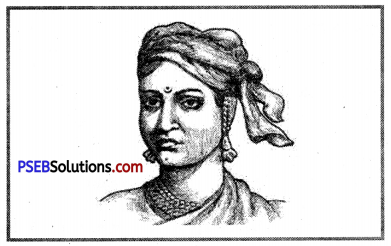 PSEB 8th Class Social Science Solutions Chapter 15 The Revolt of 1857 2