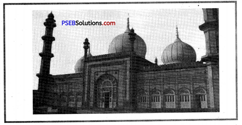 PSEB 8th Class Social Science Solutions Chapter 16 The Education and British Rule 5