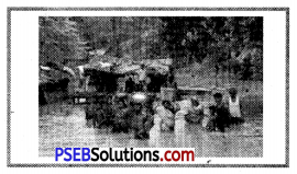 PSEB 8th Class Social Science Solutions Chapter 8 Disaster Management 2