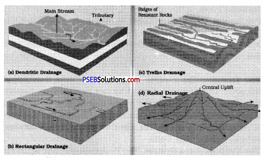 PSEB 9th Class SST Solutions Geography Chapter 3a India Drainage 2