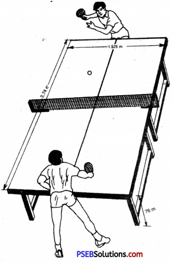table tennis image 1