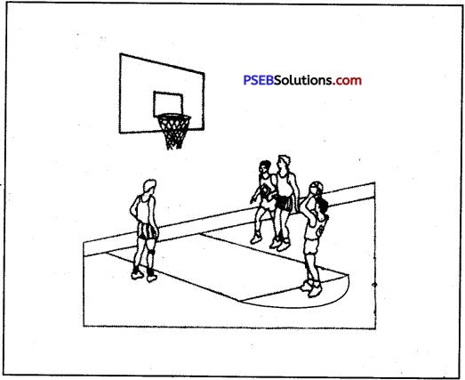Basketball image 5
