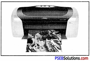 PSEB 10th Class Computer Notes Chapter 5 Desktop Publishing Notes 6