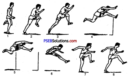 PSEB 10th Class Physical Education Solutions Athletics 8