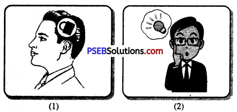 PSEB 10th Class Welcome Life Solutions Chapter 1 Self-Awareness and Self Discipline Img 1