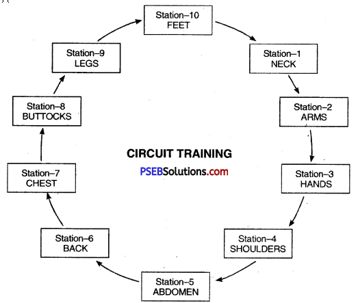 PSEB 12th Class Physical Education Solutions Chapter 2 Sports Training 1