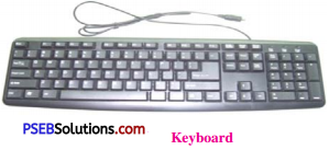 PSEB 6th Class Computer Solutions Chapter 7 Input Devices - 4