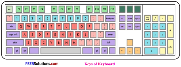 PSEB 6th Class Computer Solutions Chapter 7 Input Devices - 6