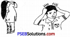 PSEB 6th Class Physical Education Solutions Chapter 1 Health 3