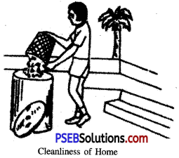 PSEB 6th Class Physical Education Solutions Chapter 2 Hygiene And Maintenance 1
