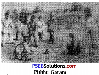 PSEB 6th Class Physical Education Solutions Chapter 4 Folk Games of Punjab 3