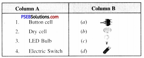 PSEB 6th Class Science Solutions Chapter 12 Electricity and Circuits 1