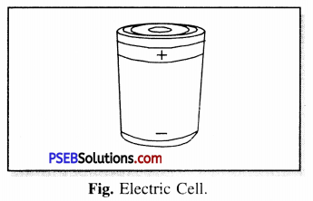 PSEB 6th Class Science Solutions Chapter 12 Electricity and Circuits 3