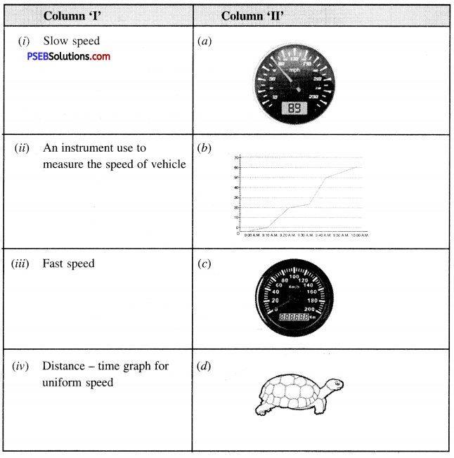 PSEB 7th Class Science Solutions Chapter 13 Motion and Time 12