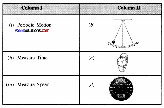 PSEB 7th Class Science Solutions Chapter 13 Motion and Time 2