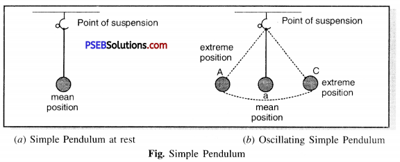 PSEB 7th Class Science Solutions Chapter 13 Motion and Time 9