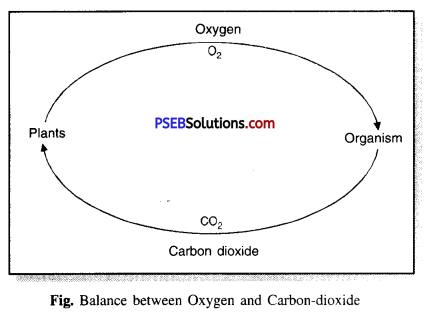 PSEB 7th Class Science Solutions Chapter 17 Forests Our Lifeline 1