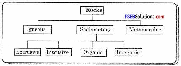 PSEB 7th Class Social Science Solutions Chapter 2 The Internal and External Face of the Earth 2
