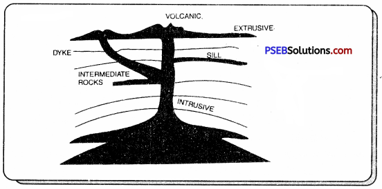 PSEB 7th Class Social Science Solutions Chapter 2 The Internal and External Face of the Earth 3