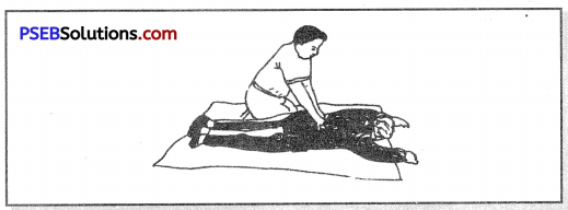 PSEB 8th Class Physical Education Solutions Chapter 1 First Aid 4