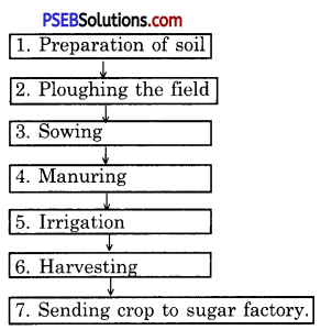 PSEB 8th Class Science Solutions Chapter 1 Crop Production and Management 5