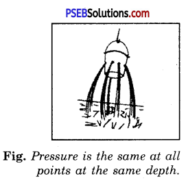 PSEB 8th Class Science Solutions Chapter 11 Force and Pressure 4