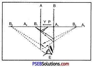 PSEB 8th Class Science Solutions Chapter 16 Light 5