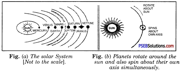 PSEB 8th Class Science Solutions Chapter 17 Stars and the Solar System 7