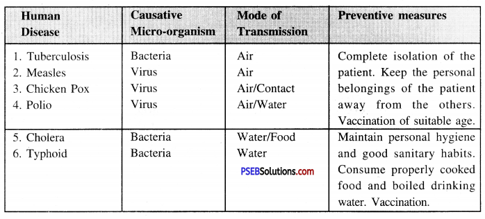 PSEB 8th Class Science Solutions Chapter 2 Microorganisms Friend and Foe 12