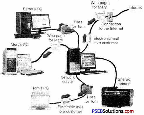 PSEB 9th Class Computer Notes Chapter 3 Networking Notes 2
