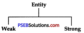 PSEB 9th Class Computer Notes Chapter 4 Introduction to DBMS 1