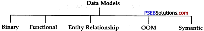 PSEB 9th Class Computer Notes Chapter 4 Introduction to DBMS 4