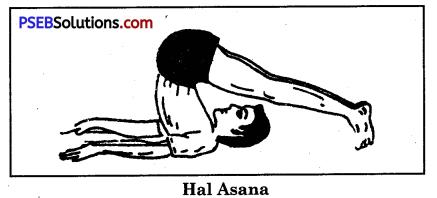 Yogic Exercises or Asanas Game Rules - PSEB 10th Class Physical Education 7